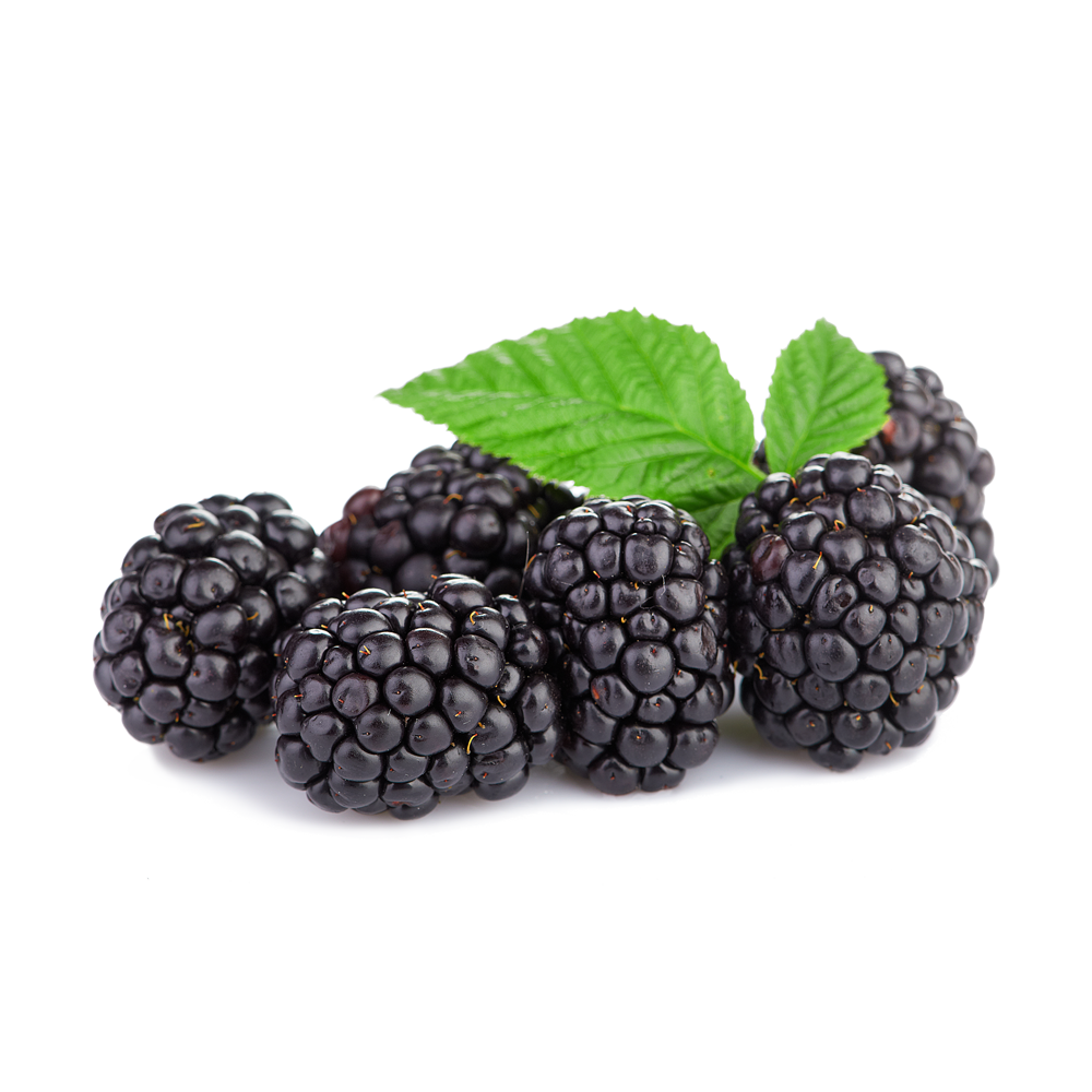 Triple Crown Blackberries