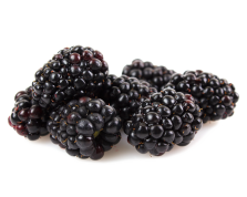Kotata Blackberries