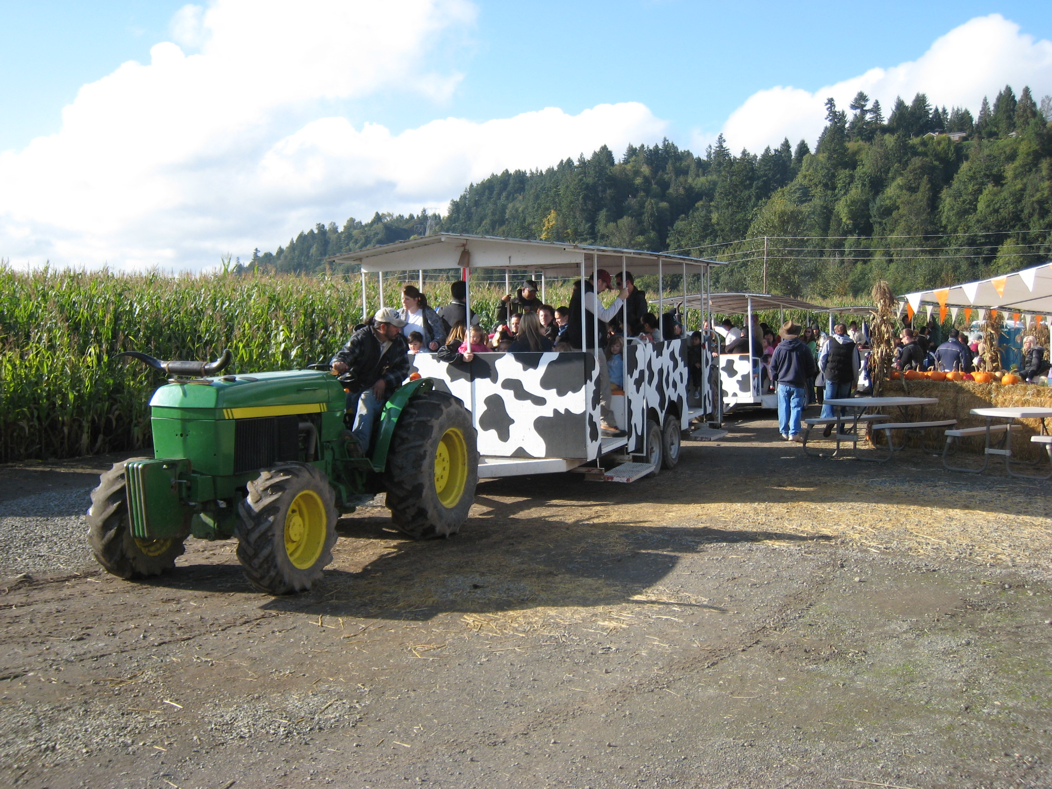 Spooner Farms Harvest Festival Farm Tours - Puyallup, WA Pumpkin Patch